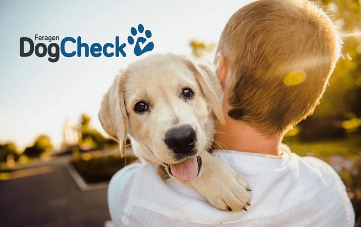 zum DogCheck