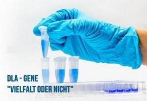 DLA-Genetische Vielfalt oder nicht