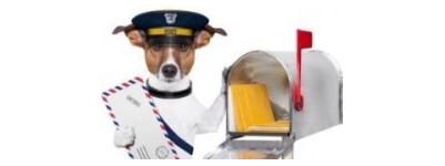 DNA Test Hund - Senden Sie das Probenset für Ihre Rassebestimmung einfach per Post retour