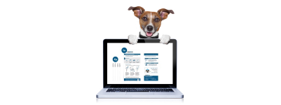 DNA Test Hund - Proben Aktivierung