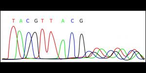 genanalyse